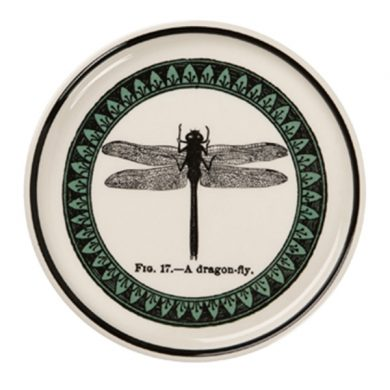 Edward Challinor dragonfly Coaster by Royal Stafford